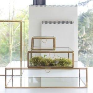 vitrine-plate-en-laiton-comingb
